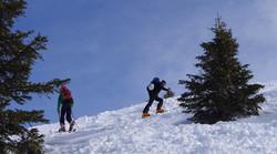 Skitourengeher auf dem Weg nach oben