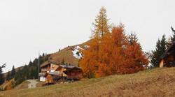 (0001)_Allgäu_Füssen_Wandern_Lechtal