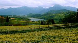 Der Weissensee im Mai