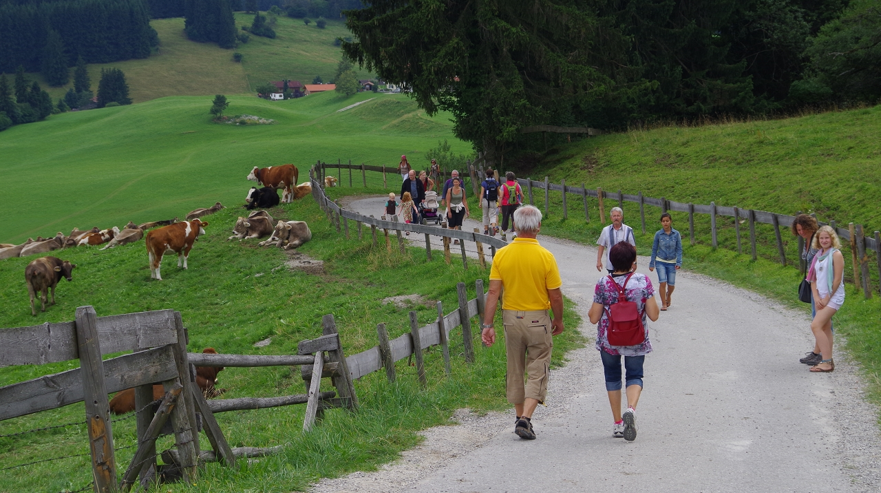 Auf dem Weg von Eisenberg zur Burg