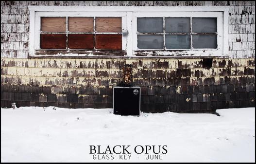 Black Opus Promo Poster