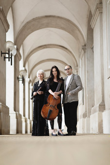 Petri/Perl/Esfahani Trio