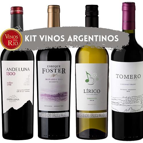 Kit Vinos Argentinos