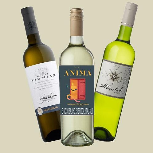 Kit 3 países: 3 vinos blancos