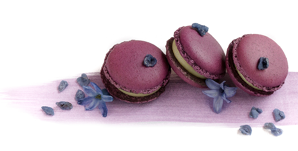 Classic box of Violet Macarons