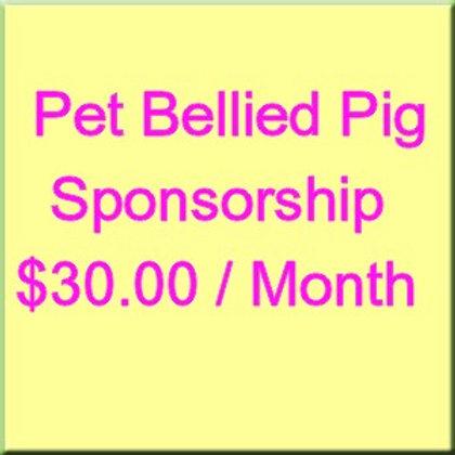 Pot Bellied Pig Monthly Sponsorship