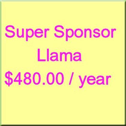 Annual Sponsorship Llama