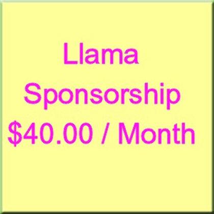 Llama Monthly Sponsorship