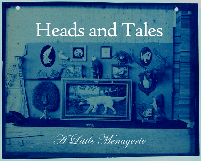 Heads and Tales: A Little Menagerie | Project Space