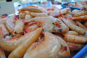 Peeled & Deveined or Shell-on Shrimp in all sizes