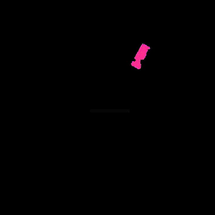 Norfolking Around Logo - v2 - pink 2.png