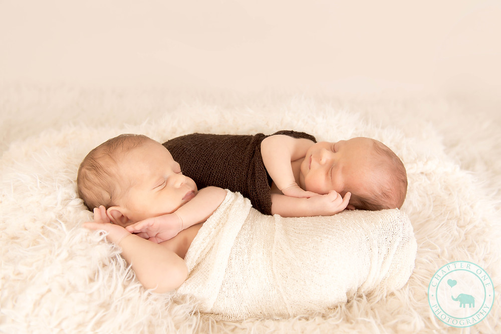 Identical twin boys, Sydney Newborn Photography