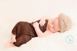 Sydney Newborn boy in brown wrap