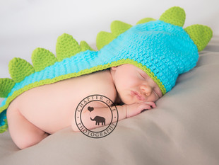 A little bit of fun! Dino-snore