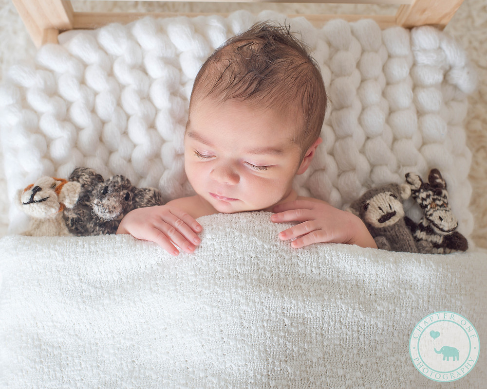 Sydney Newborn Photography baby girl