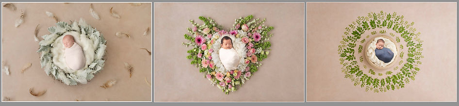Art based newborn photographs.jpg