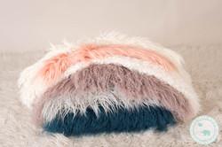 Newborn Photography studio furs