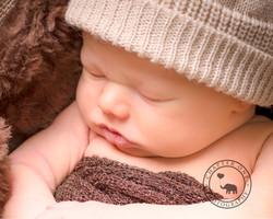 Sydney Newborn baby with brown hat