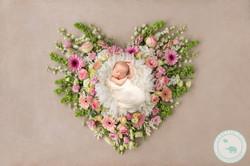 newborn Girl in heart of flowers