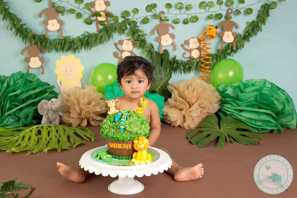 Jungle Cake Smash Photography Sydney