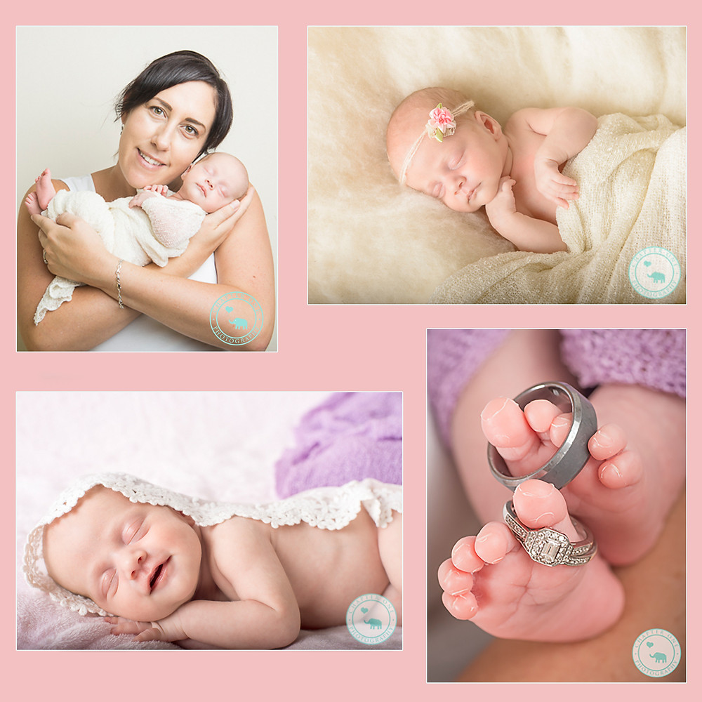 newborn photography syndey premmie.jpg