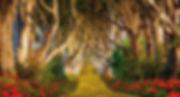 painel-floresta-g-frete-gratis-painel Fl