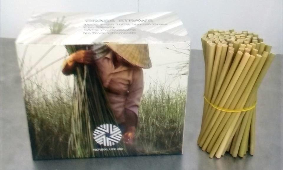 Bombillas Hoa Sen 14 cms. (500 UN)