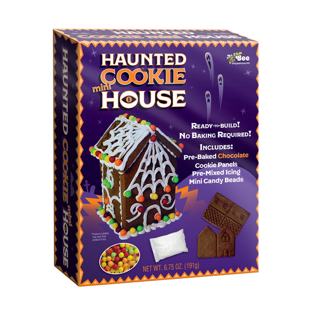6725 Bee Mini Haunted House Kit