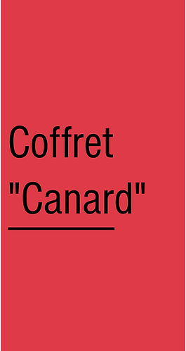 """COFFRET """"CANARD"""""""