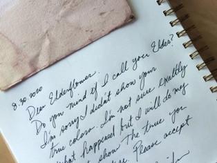 Dear Elderflower, I'm sorry.