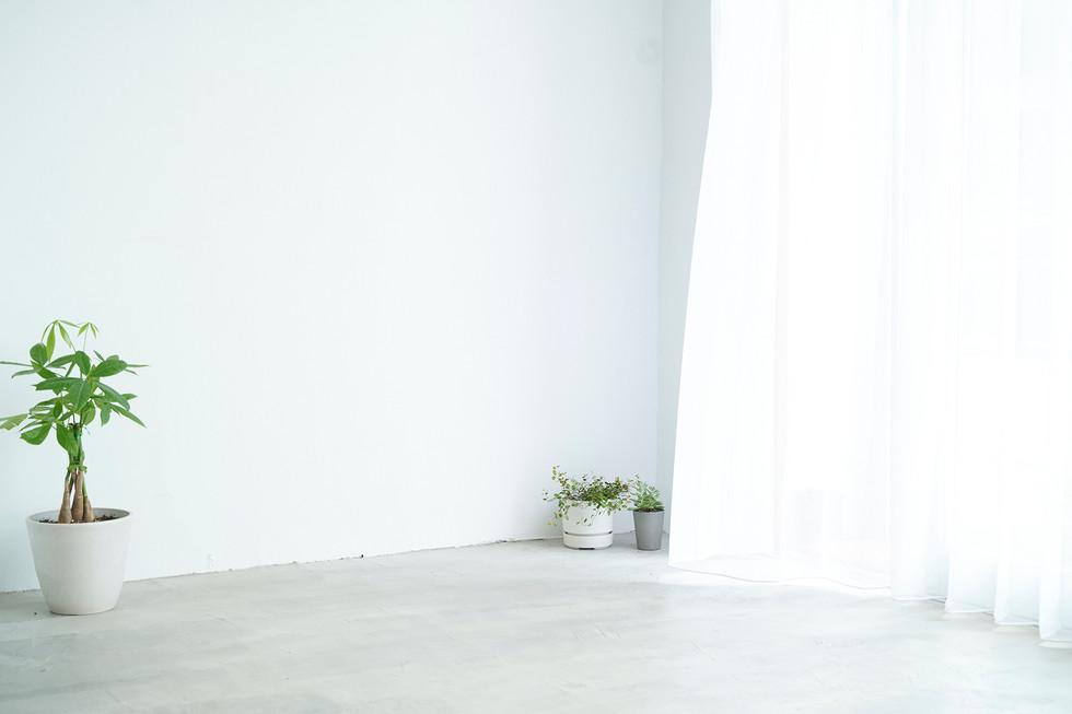 入口側の白壁(1.6m)
