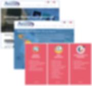 Advantagewebsite.PNG