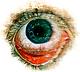 eyeballlll.png
