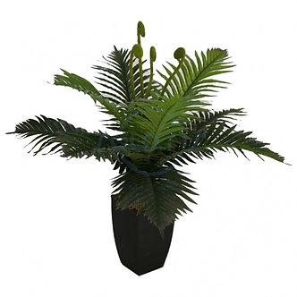 Пальма, чорний квадратний горщик, 62 см 804-9