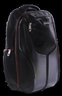 Ранець ZB Ultimo Matrix Dark  ZB16.0224