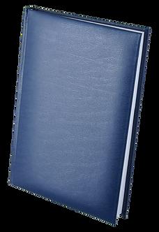 Щоденник недатований EXPERT, A5, колір асорті BM.2004