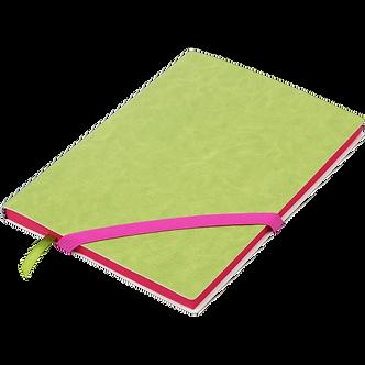 Блокнот діловий LOLLIPOP А5, 96 арк, лінія, колір асорті, BM.295203