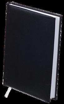 Щоденник недатований STRONG, A5, колір асорті  BM.2022-01
