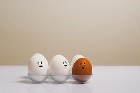 artsy-chicken-eggs-color-1556707.jpg