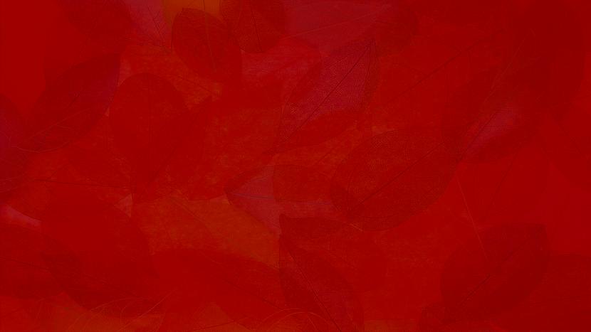 fall-fest-wallpaper.png