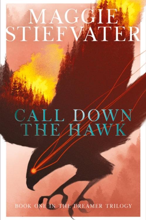 Call Down the Hawk - Maggie Stiefvater
