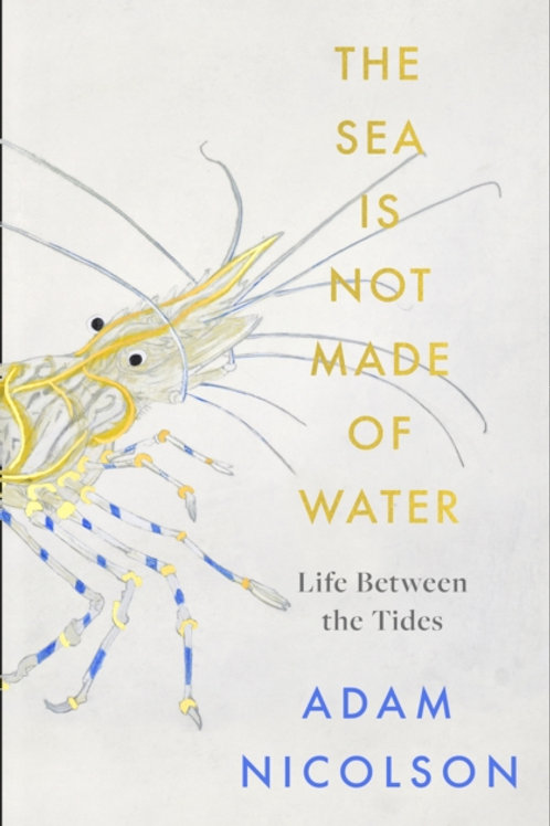 The Sea is Not Made of Water: Life Between the Tides - Adam Nicolson