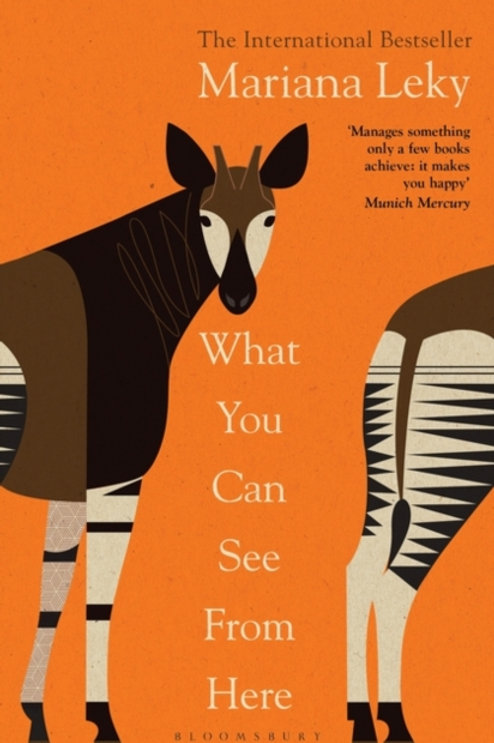 What You Can See From Here - Mariana Leky