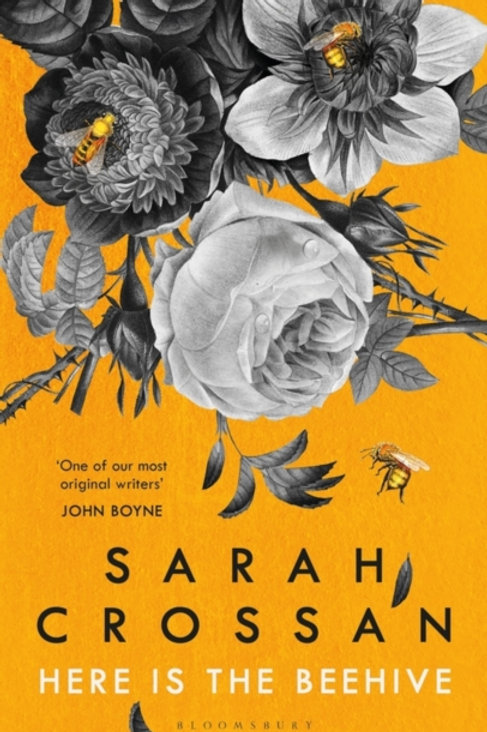 Here is the Beehive - Sarah Crossan