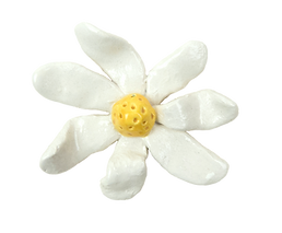 Daisy2_edited.png