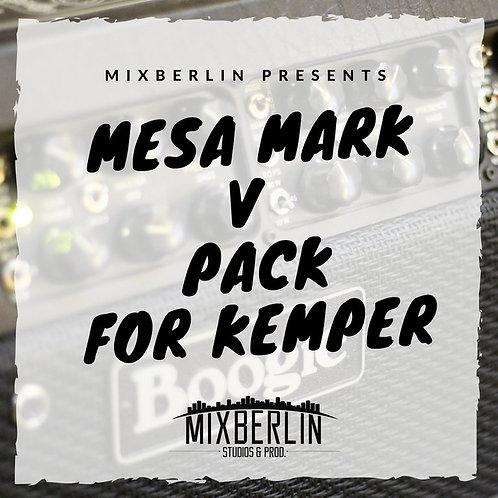 Besa Moogie MarkV Kemper Pack