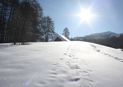 Raquettes_ neige