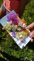 Carte_postale_fleurs