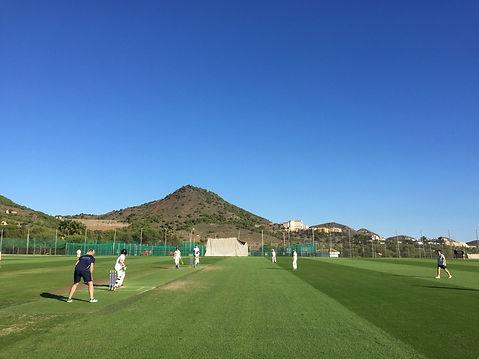 Cricket LMC 1.jpeg