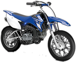 2008-yamaha-TTR110